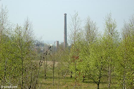 Wraggs Chimney from Woodlands